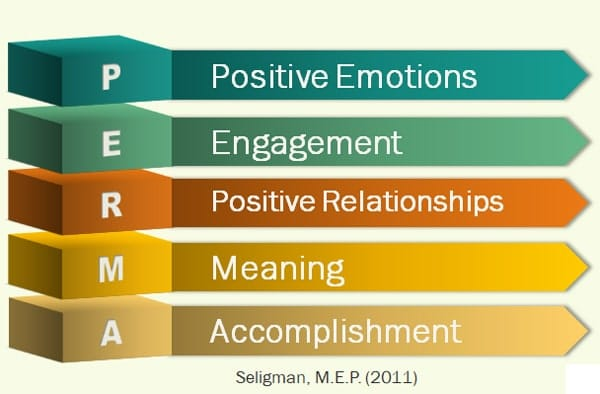 PERMA model for well-being
