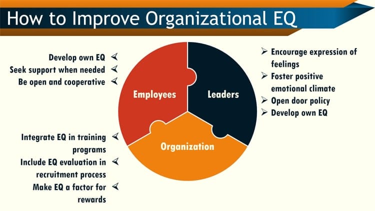 Organizational EQ and emotional intelligence solutions for managers